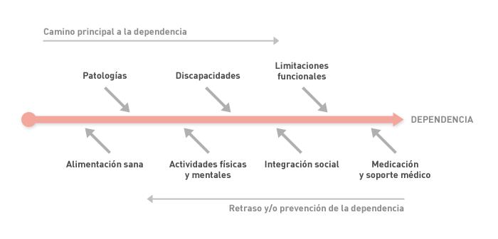 Programa: Mayores (gráfico 2)